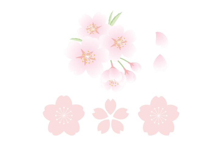 桜 イラスト 商用フリー